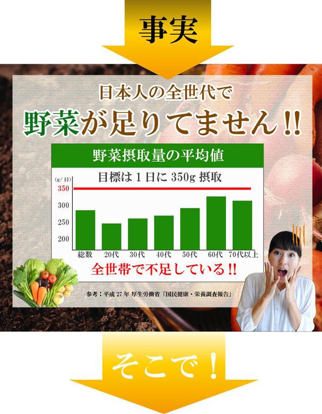 日本人は野菜が足りていない